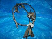 Toyota Landcruiser 75 Series Accelerator Cable Warwick Southern Downs Preview