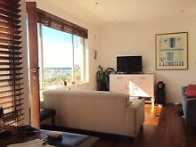 Apartment 1 Br Available Bondi Eastern Suburbs Preview