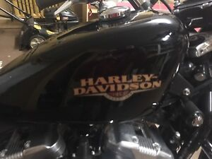 2010 HARLEY Sportster Motorcycle; mint condition, one lady owner