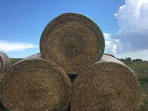 Hay bales Eden Valley Barossa Area Preview