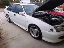 94 HSV Clubsport Ferndale Canning Area Preview