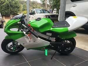 50cc pocket bike Cromer Manly Area Preview