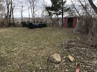 LAWN SPRING CLEANING $80