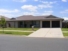 THIS IMMACULATE HOME WILL SUIT NEW HOME BUYER - URGENT SALE REQ Turvey Park Wagga Wagga City Preview
