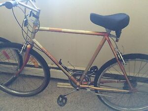 Bike for adult