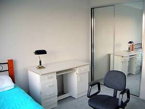 Nice Double Sized Room for Rent - Female flatmate Wanted Acacia Gardens Blacktown Area Preview