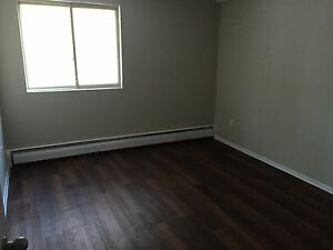 Everything NEW! 1 Bedroom Apartment