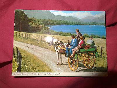 Postcard Jaunting Car Lake  Killarney, Ireland 1963 John Hinde 1-R