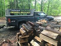Tree service Barrie and surrounding areas