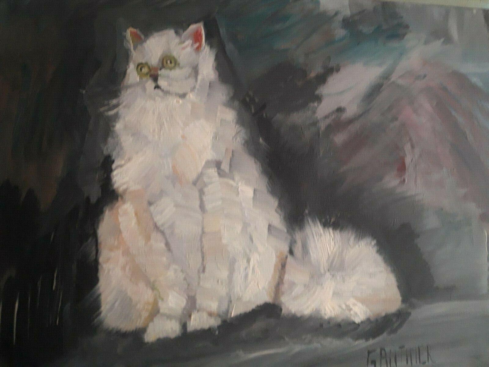 Chat de animalerie15