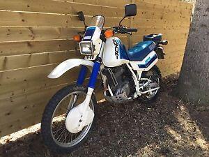 Suzuki DR600 Dakar