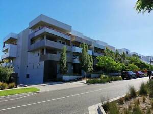 Ashwood large apartment one room for rent include bills and internet