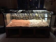 Reptile Tank Northam 6401 Northam Area Preview