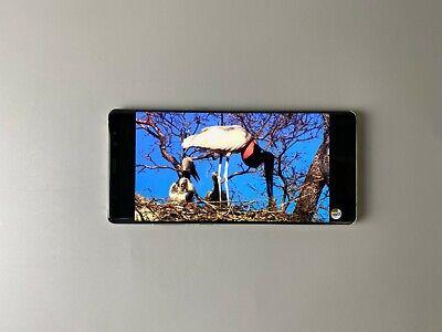 Samsung Galaxy Note8 SM-N950N 64GB Maple Gold - Single sim, Condition : Shadow