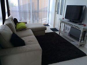 Flat for rent East Killara 2 rooms  $440 + $50 East Killara Ku-ring-gai Area Preview