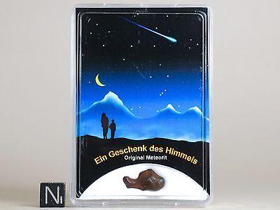 Meteorit AGOUDAL Eisen Meteorite Zertifikat Sternschnuppe Geschenk Glücksbringer