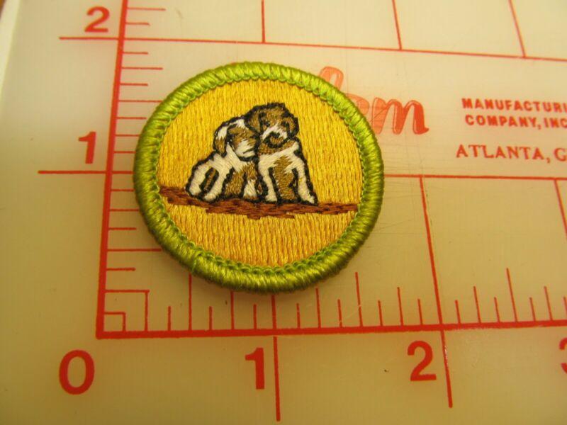 Scout stuff backed DOG CARE merit badge emblem patch (yZ)