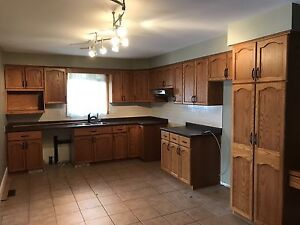 20+ linear ft kitchen cabinets includes desk area