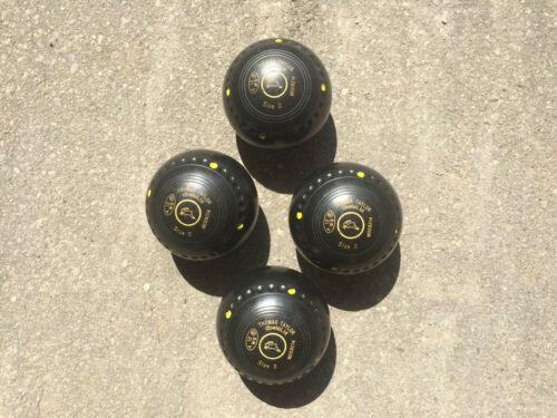 Thomas Taylor Lignoid Set of 4 Size 2