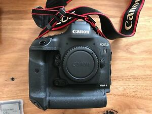 Canon EOS-1DX Mark II - 3 Batteries 128GB CFast Card + Reader Clovelly Eastern Suburbs Preview
