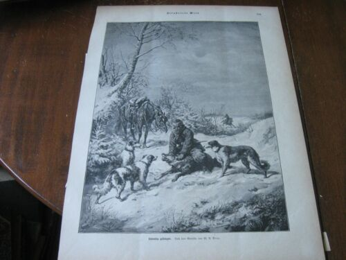 1898 Art Print - RUSSIAN WOLFHOUND Borzoi DOGS used to Catch WOLF Hunt Hunting