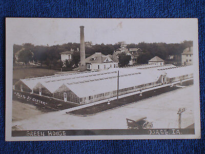 Osage IA/Large Commercial Greenhouse/Sepia RPPC/Photo by Carter/Posted 1918 for sale  Shipping to United Kingdom