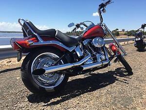 2008 Harley FXSTC Softail Custom Tamworth Tamworth City Preview