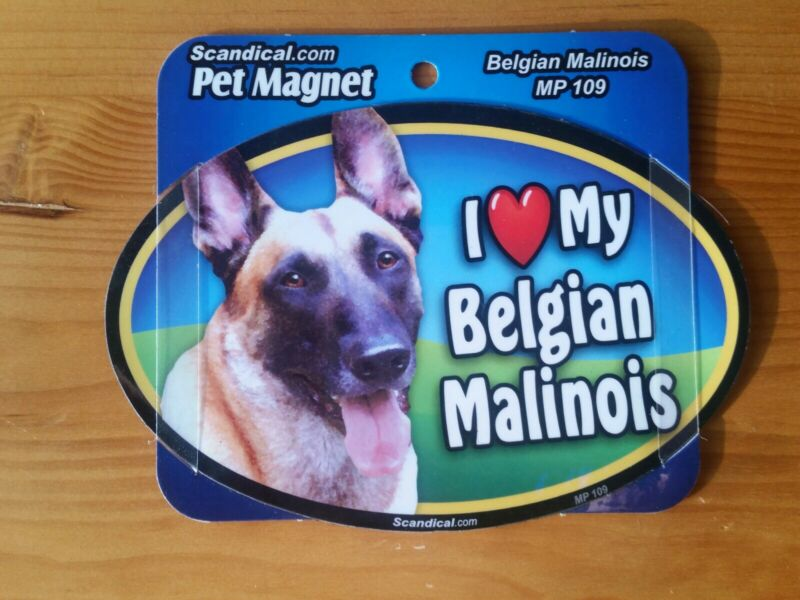 "Scandical I Love My Dog Laminated Car Pet Magnet 4"" x 6"" Belgian Malinois"
