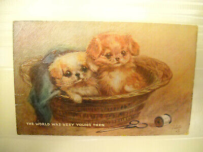 2 SMALL DOGS IN SEWING BASKET antique unused postcard CHROMOLITHOGRAPH TUCK'S