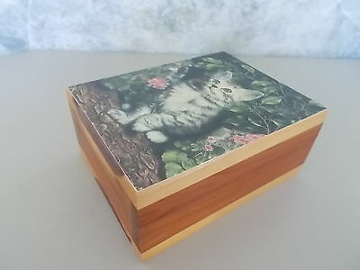 Vintage Cedar Wood Kitten Kitty Cat Jewelry Trinket Box Hinged