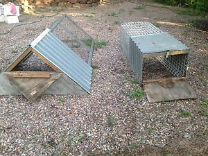 Chicken coops Brassall Ipswich City Preview