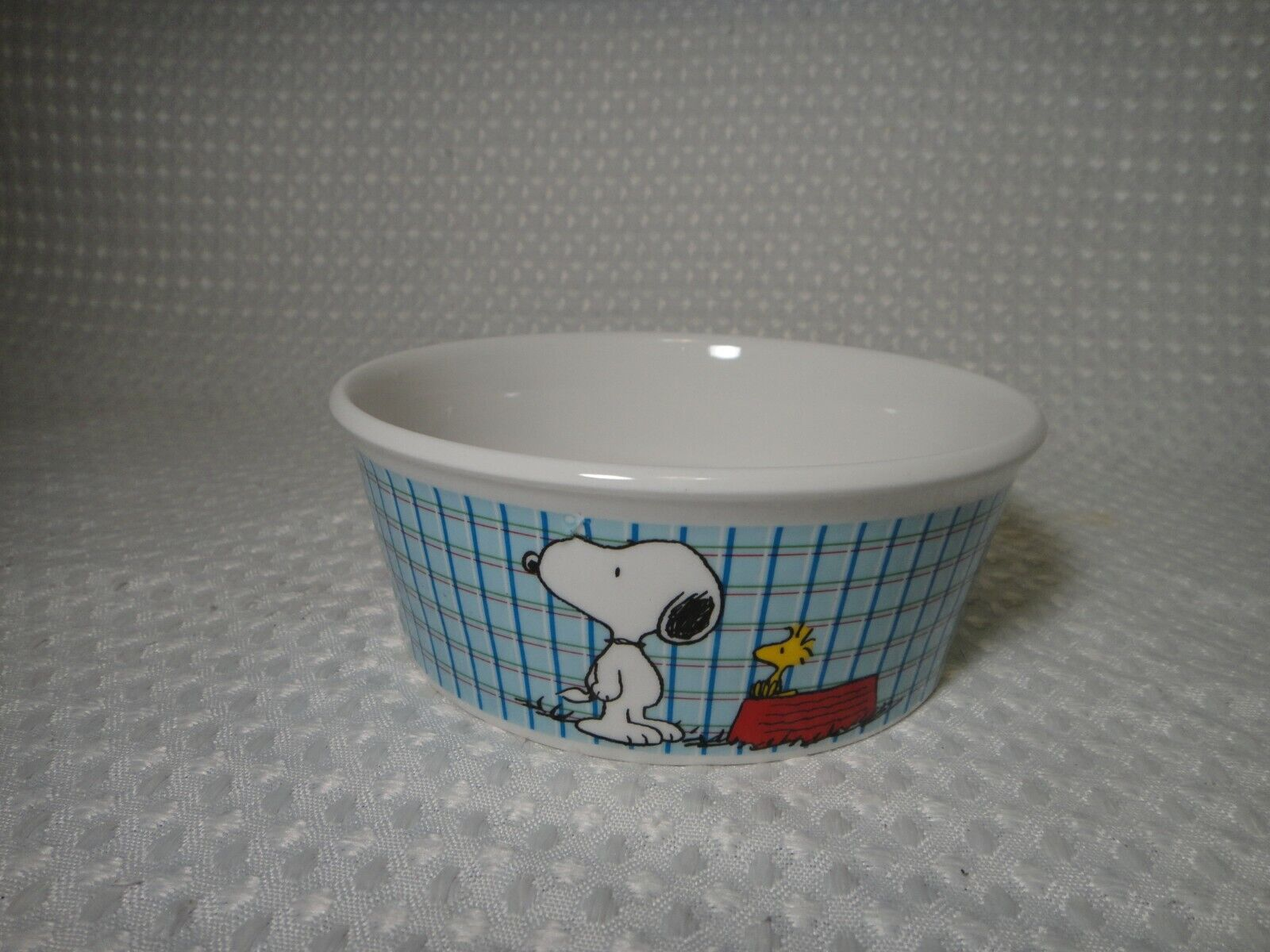 Peanuts Snoopy Pet Food Water Bowl All Gone Dog or Cat Size