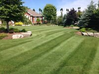 FREEMAN LAWN CARE & Property Maintenance!