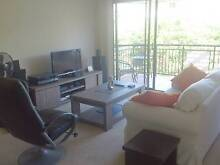DOUBLE ROOM WITH OWN BATHROOM AVAILABLE IN COORPAROO Coorparoo Brisbane South East Preview
