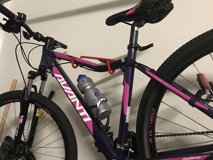 Avanti Ladies Bike