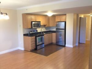 Luxury Studio Apartment in South End!