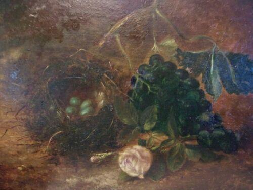 c. 1900 Bird Nest Grapes Rose Still LIfe Oil estate painting antique art nature