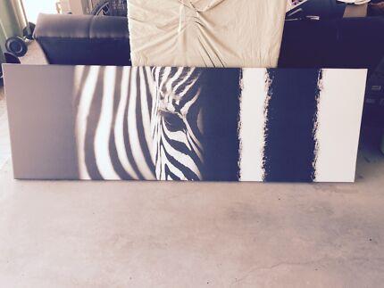 Large Zebra Canvas Loganlea Logan Area Preview
