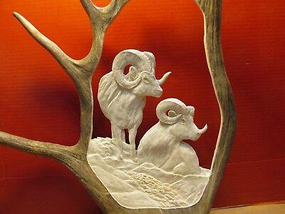 Moose Antler Carving -