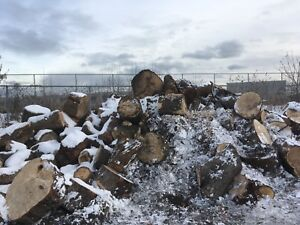 Free wood for firewood