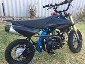 125cc thumpstar pitpro Cannington Canning Area Preview