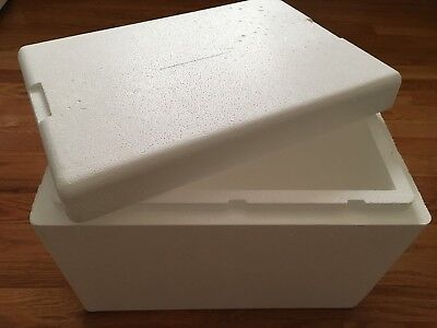 Thermosafe Styrofoam Insulated Shipping Cooler Box Xx-large 20x13x12 Interior