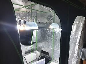 Hydroponic Equipment, Lights, Tents