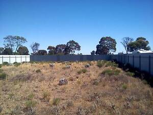Land in Blanchetown S.A 5357 Blanchetown Mid Murray Preview