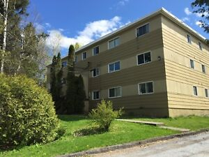 Fall into this great 1 bedroom on Marr Rd!