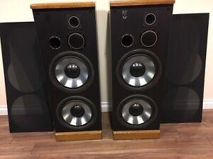 Post Audio Floor Speaker (excellent condition)