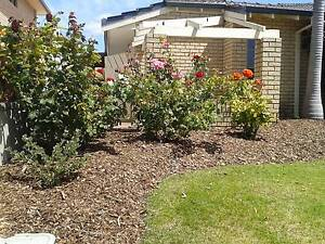 The Mulch Guy Dianella Stirling Area Preview