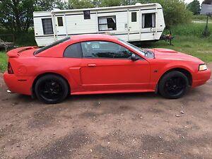 2001 mustang GT v8