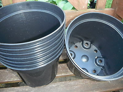 PK(50) 2 LTR LITRE RIGID PLASTIC PLANT POTS NEW IN STOCK BEST PRICE FREE POST  ()
