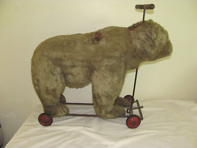 "ANTIQUE 1928 STEIFF BEAR W/GROWLER ""RIDE ON"" W/BUTTON EAR AS FOUND & RARE LARGE!"